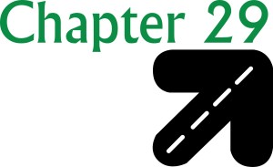 Chapter 29 Logo